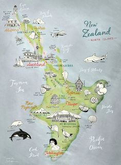 - New Zealand North Island illustrated Map, Illustra. - New Zealand North Island illustrated Map, Illustra. - Postcard New Zealand South Island hand drawn map Map Of New Zealand, New Zealand North, New Zealand South Island, New Zealand Travel, Australia Map, Watercolor World Map, Work And Travel Australien, Kia Ora, New Zealand Adventure