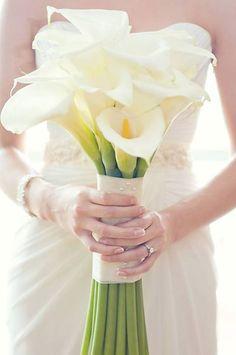 Hottest 7 Spring Wedding Flowers to Rock Your Big Day--elegant white Calla Lily wedding bouquets, spring wedding ideas Purple Wedding Flowers, White Wedding Bouquets, Bridesmaid Flowers, Bride Bouquets, Bridal Flowers, Wedding Blue, Greenery Bouquets, Trendy Wedding, Bridesmaid Ideas