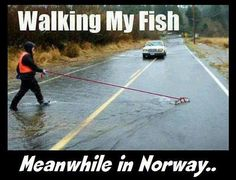 Normal day in Norway<< we don't do this in Norway