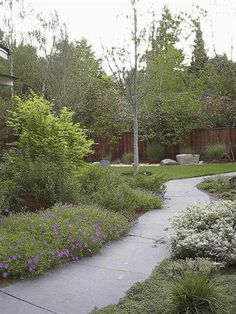 Garden and concrete path by West Bay Landscape Co. in San Jose, California
