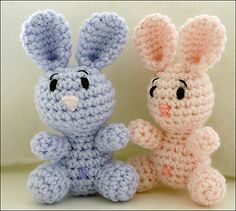 Cute little bunnies