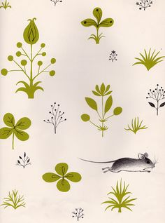 "Endpaper illustration from ""Mary's Marvelous Mouse"" - written by Mary Francis Shura, illustrated by Adrienne Adams Motifs Textiles, Textile Patterns, Print Patterns, Art And Illustration, Pattern Illustration, Pattern Art, Pattern Design, Print Design, Collages"