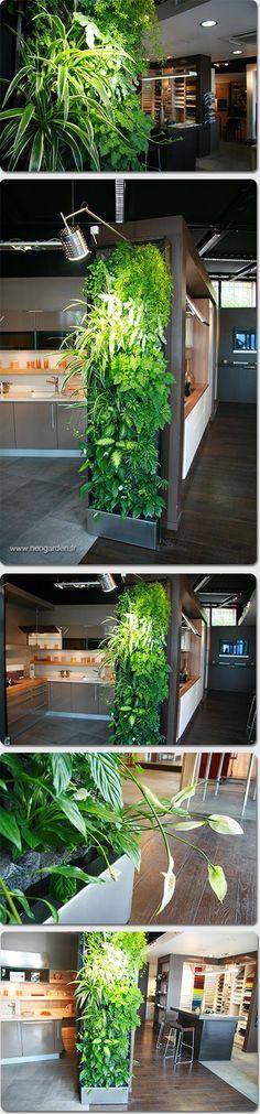 Module de mur végétal 65cm x 240cm   Green wall module 65cm x 240cm…: