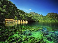 The impossibly beautiful Ora Beach on Seram Island Maluku Province Indonesia. Quite far off the tourist trail Ora Beach in eastern Indonesia can be reached via a lengthy plane ferry and car journey. #Indonesia  #DiscoverIndonesia #ExploreIndonesia #VisitIndonesia #Culture #Travel #Instatravel #InstaTravel #Picoftheday #Picstagram #TravelPhotography #TravelPic #TravelBug #Travelogue #TravelAsia #InstagramThailand #TravelPorn  #BackyardTravel