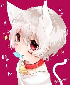 Anime Cat Boy, Gato Anime, Cute Anime Boy, Manga Boy, Anime Chibi, Anime Art, Neko Kawaii, Lolis Neko, Neko Boy