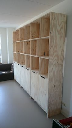 Cabinet of Underlayment Plywood Cabinets, Plywood Furniture, Diy Furniture, Furniture Design, Plywood Shelves, Bookshelves, Bookcase, Diy Storage Cabinets, Plywood Design