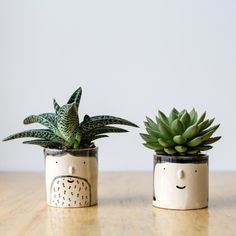 When Harry met Sally: our best-selling He and She Planters are a charming gift for lovebirds!