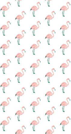 Pink bird wallpaper flamingos we heart it wallpaper pink hot pink bird wallpaper . Flamingo Wallpaper, Bird Wallpaper, Cute Patterns Wallpaper, Cute Wallpaper Backgrounds, Animal Wallpaper, Tumblr Wallpaper, Cute Wallpapers, Iphone Wallpaper, Ipod Backgrounds