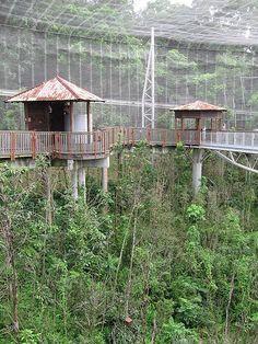 Amazing File:Lory Loft Jurong Bird Park, Oct - Wikipedia, the free encyclopedia pic