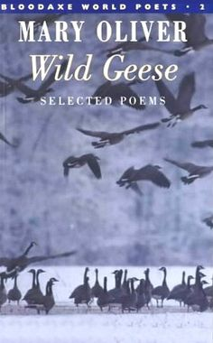 """Mary Oliver reads her beloved poem Wild Geese.  """"Whoever you are, no matter how lonely, the world offers itself to your imagination…"""""""