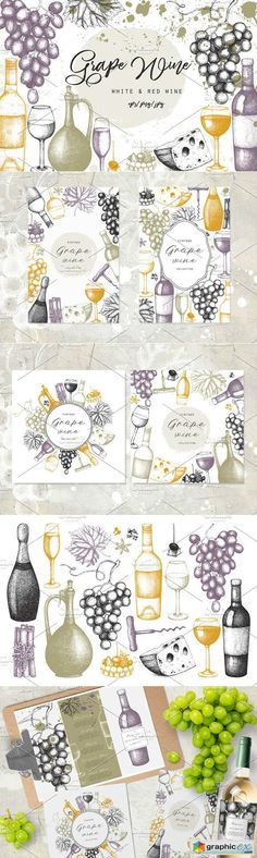 Grape Wine Illustations Collection  stock images