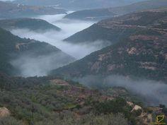 منظر لمنطقة نهر الخوابي - طرطوس Tartus - Syria