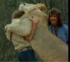 I Love The Story Of Christian The Lion. Hugging His Owners After He Had Been
