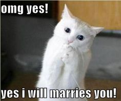 Haha, do you really want to marry?