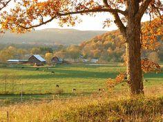 Ohio farm, in Fall