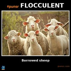 #punsr ABSTEMIOUS meme | Punsr.com | There is a joke in every word. The World's Largest Pun Dictionary.
