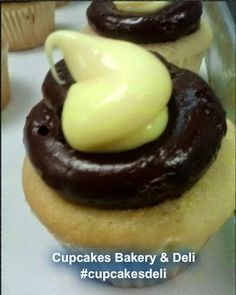 #Boston Cream Pie #Cupcakes from Cupcakes Bakery  Deli, Pasco, WA #cupcakesdeli