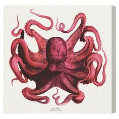 Hang this artful canvas print above your living room seating group to create a stylish conversation space, or display it in the foyer for eye-catching appeal. Crafted in the USA, this chic design showcases an octopus motif.  Product: Canvas printConstruction Material: Canvas and woodFeatures:  Certificate of authenticity by the artist includedMade in the USAReady to hangHand-stretchedGallery wrapped  Cleaning and Care: Dust lightly using a clean, lint-free cloth