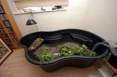 Red Slider Turtle Habitat Aquarium Above: A surface mount pond in use with external canister filters. Turtle Tub, Red Ear Turtle, Turtle Cage, Turtle Aquarium, Turtle Pond, Pet Turtle, Tortoise Turtle, Tortoise Cage, Diy Aquarium