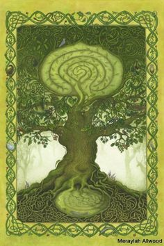 7 best tree wisdom images on pinterest magick tree of life and from the birch to the willow sharlyn hidalgo invites you to walk in the footsteps of the druids and enrich your life with the sacred power of trees fandeluxe Image collections
