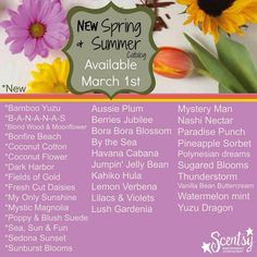 Scentsy New Spring/Summer Scents 2015.  Beginning march 1st!  www.durenda.scentsy.us