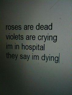 Розы мертвы, фиалки плачут, я в больнице - говорят, я умираю