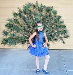 Need an amazing costume this Halloween party? Get hold of one of those simple halloween outfits. Pretty Peacock Instructions to make your own are here:. Girls Peacock Costume, Peacock Halloween Costume, Diy Halloween Costumes For Women, Halloween Outfits, Girl Costumes, Halloween Kids, Peacock Dress, Halloween Tutus, Costume Ideas