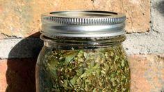 Sage-Honey-Recipe-Herbal-Academy-of-New-England