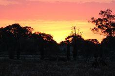 Sunset 22nd Feb 2012