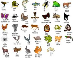 Igbo names for animals