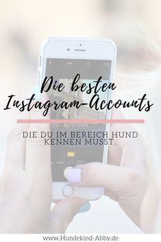 #Hund #Hunhdeblogger #Hundeliebe #Wissen #Fotografie Hunde || Erziehung || DIY || Wissen || Gesundheit || UNSERE LIEBLINGSINSTAGRAM-ACCOUNTS 2018 || WERBUNG || Freebies, Marketing, Social Media, Phone, Blogging, Interesting Facts, Parenting, Thoughts, Advertising