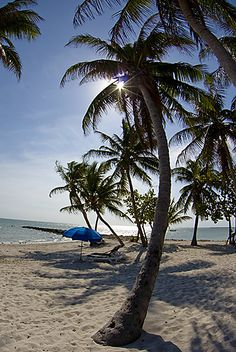 Oh to be here - Key West, FL