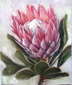 Oilpainting by R. Visage Protea Art, Protea Flower, Acrylic Flowers, Watercolor Flowers, Watercolor Art, Art Floral, Merian, Tropical Flowers, Botanical Prints