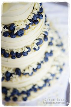 "This is NOT our base cake concept, rather we our merging the blueberry/white chocolate ""ribbons"" with our base cake concept!!!"