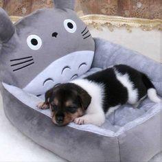 My Neighbor Totoro Dog Bed (US $24)
