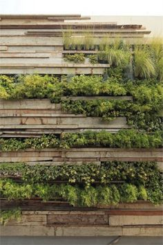 The Best 50+ Most Amazing Landscape Design Ideas You Have To See http://decorathing.com/garden-ideas/50-most-amazing-landscape-design-ideas-you-have-to-see/