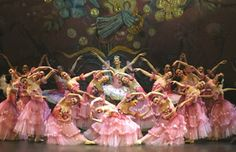 nutcracker costumes - Google Search