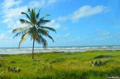 Praia dos Náufragos, Aracaju (SE)
