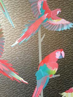 Estampas, papel de parede, Wallpaper, Arara, Wallcoverings,
