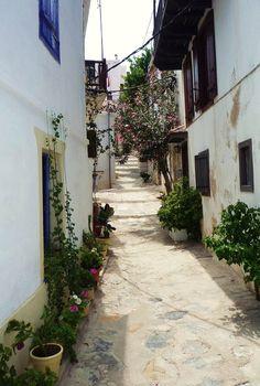 Streets of Skopelos | Greece (by gilia80)