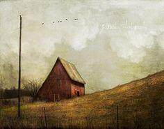 Dappled | Flickr - Photo Sharing!