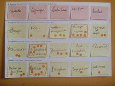 Exercício Treinamento IDM Básico - Innovation Decision Mapping