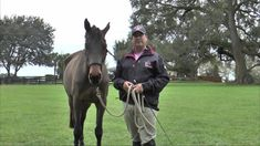 Basic Training with David O'Connor | Episode Three: Longeing. Strong, clear aids direct a horse's movement