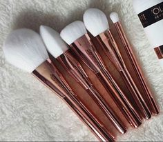 This brush set!