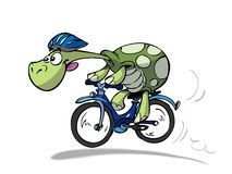 Illustration about Cool sportive cycling turtle in nature. Illustration of bike, character, cool - 8282067 Cycling Art, Cycling Tips, Indoor Cycling, Cycling Workout, Road Cycling, Cycling For Beginners, Tortoise Turtle, Cycling Motivation, Turtle Party