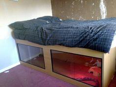 Bed viv!!! - Reptile Forums