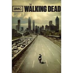 Save Price The Walking Dead Poster 27x40 TV Series Poster | Sale Posters Prints