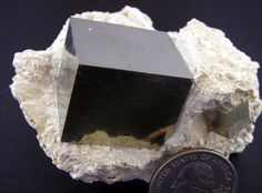 Isn't that amazing ... formed like that! Incredible! THESE ARE FROM THE AMPLIACION a VICTORIA MINE, NAVAJUN, LaRIOJA, SPAIN.  THE PYRITE CUBES WERE CREATED DURING THE JURASSIC PERIOD (150+ MYA), AND ARE THE BEST FORMED PYRITE CUBES IN THE WORLD!  THEY HAVE NOT BEEN CUT OR POLISHED AND ARE COMPLETELY NATURAL.