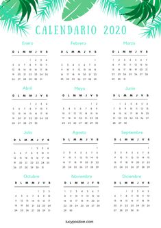 Copia de The Greenpoint Bullet Journal Boxes, Bullet Journal School, Bullet Journal Inspo, School Timetable, Creative Calendar, Learning Websites, Lettering Tutorial, Good Notes, School Notes