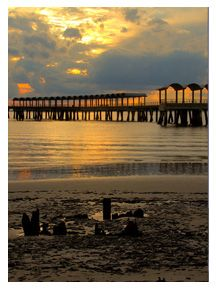 Annual Yoga and Meditation Retreat Jekyll Island Club Hotel, Meditation Retreat, New Theme, Yoga, Explore